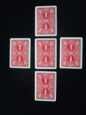 bicycle marked cards small